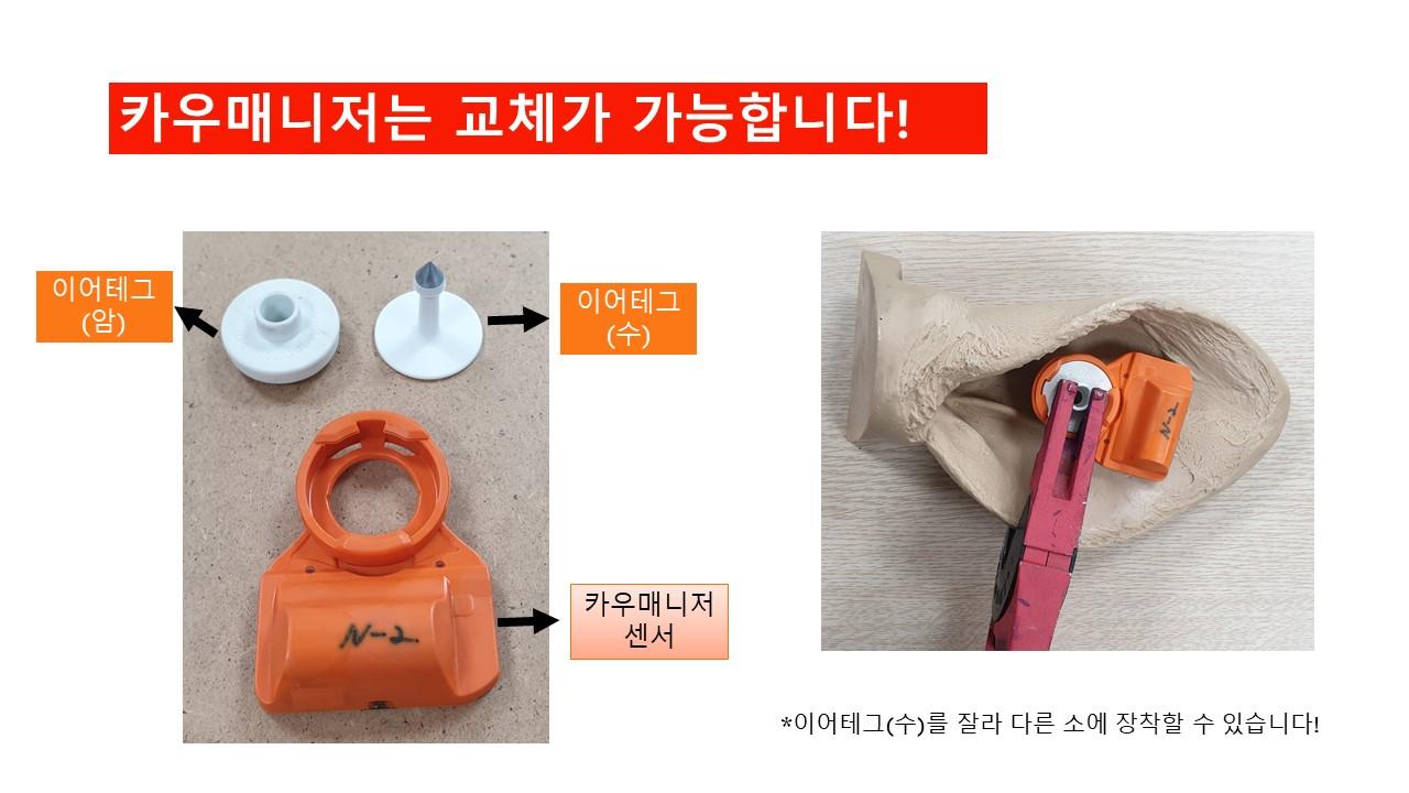 발정 온 소 찾기 추가.jpg